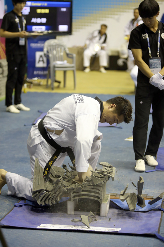 The 2016 World Taekwondo Hanmadang of Knife Hand Breaking Senior I II II Master on Ausut 6